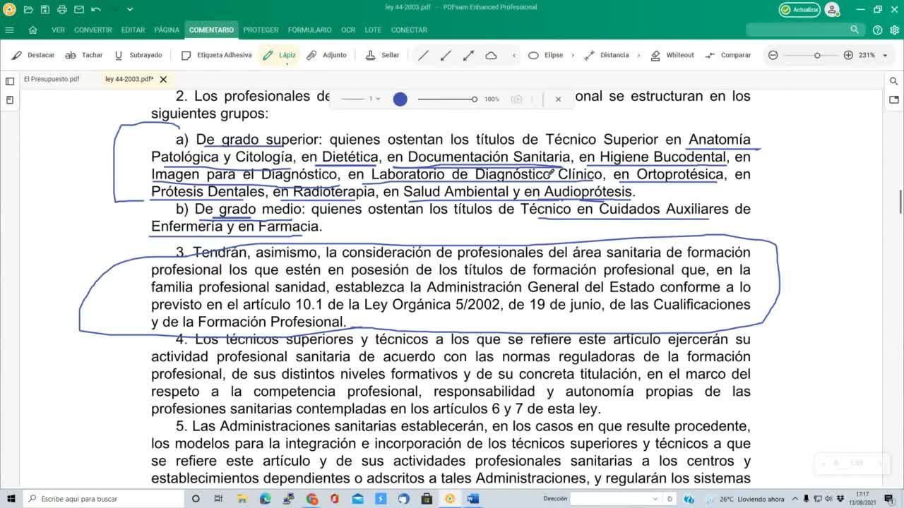 Profesines sanitarias 13-09-2021